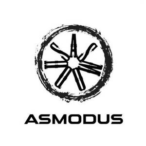 AsModus Akkuträger
